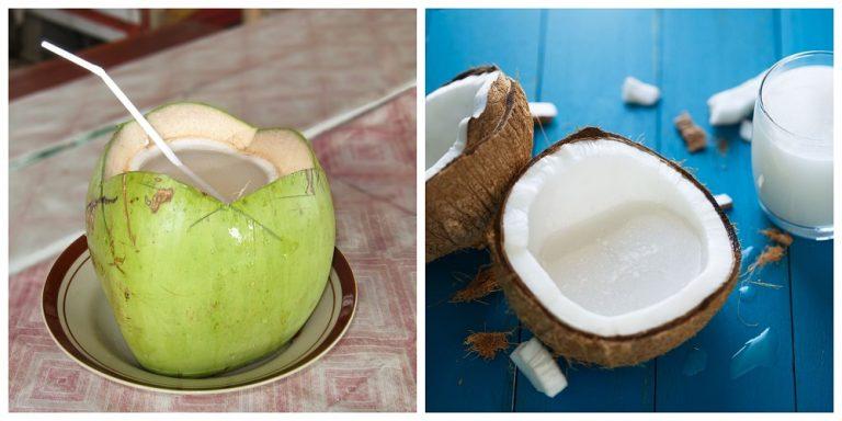 शरीर को स्वस्थ और सुंदर रखने के लिए सबसे ज्यादा फायदेमंद है नारियल