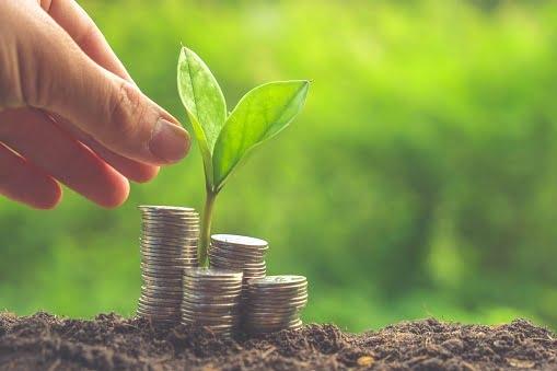 पौधे बनाए धनवान: पैसों की तंगी से हैं परेशान तो इन 5 पौधों को घर में दीजिए स्थान