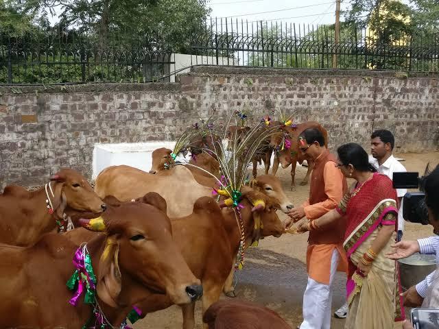 मध्यप्रदेशः वसूला जाएगा काउ टैक्स, आंगनबाड़ियों में अंडे की जगह मिलेगा गाय का दूध