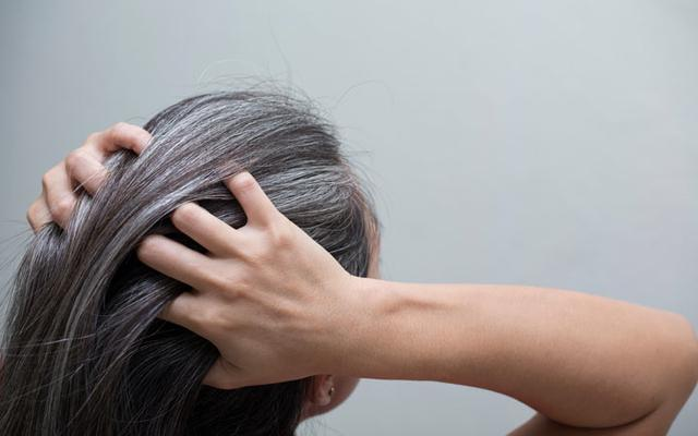 सफेद बालों से छुटकारा पाने के लिए डाइट में शामिल करें ये 5 चीजें